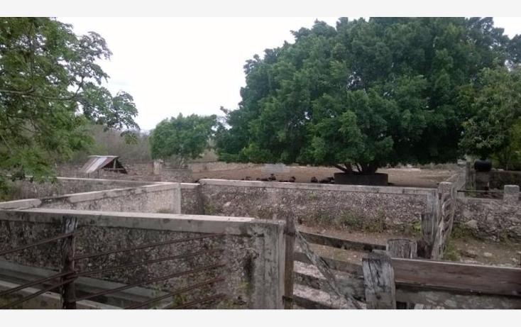 Foto de rancho en venta en  , corredor ganadero, tunkás, yucatán, 1755114 No. 03