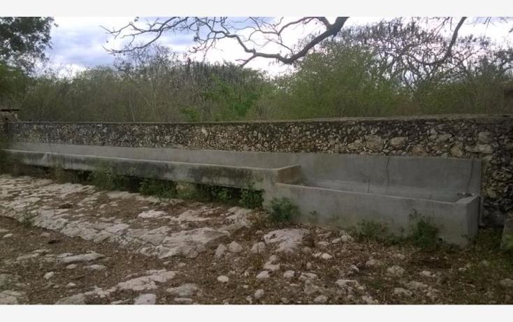 Foto de rancho en venta en  , corredor ganadero, tunkás, yucatán, 1755114 No. 06