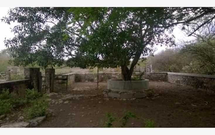 Foto de rancho en venta en  , corredor ganadero, tunkás, yucatán, 1755114 No. 11