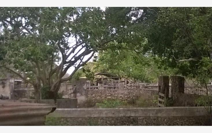 Foto de rancho en venta en  , corredor ganadero, tunkás, yucatán, 1755114 No. 12