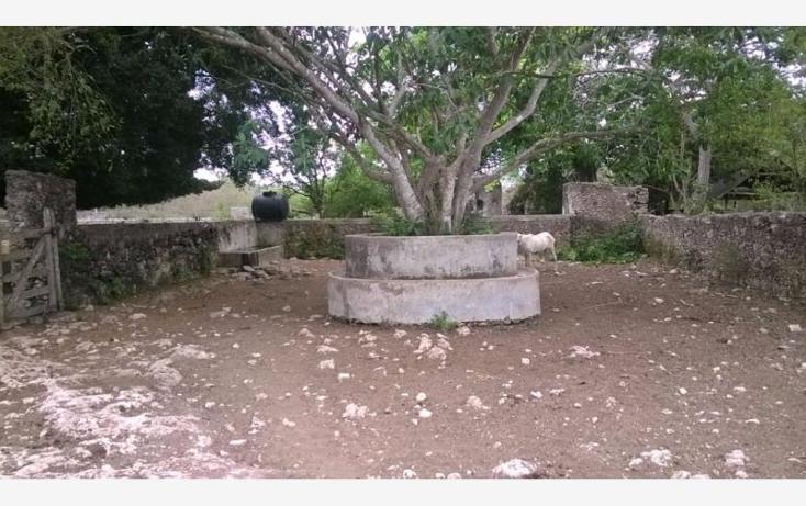 Foto de rancho en venta en  , corredor ganadero, tunkás, yucatán, 1755114 No. 14