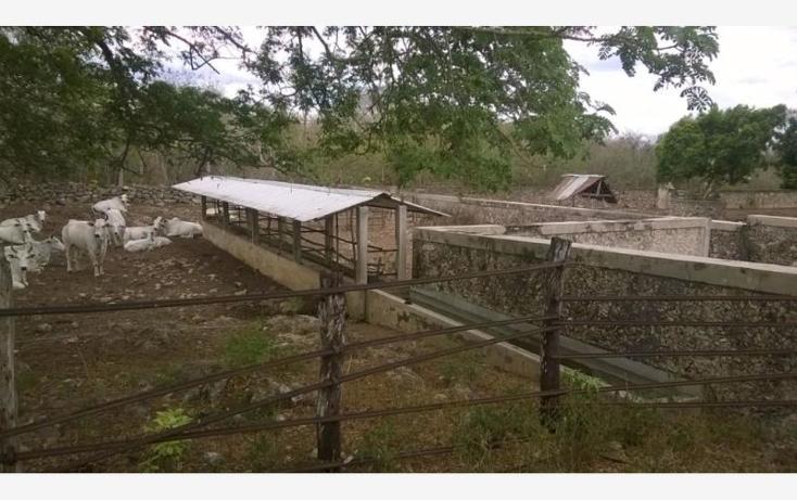 Foto de rancho en venta en  , corredor ganadero, tunkás, yucatán, 1755114 No. 15