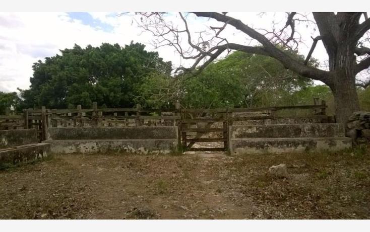 Foto de rancho en venta en  , corredor ganadero, tunkás, yucatán, 1755114 No. 16