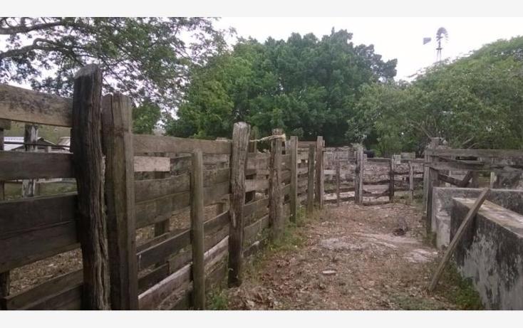 Foto de rancho en venta en  , corredor ganadero, tunkás, yucatán, 1755114 No. 18
