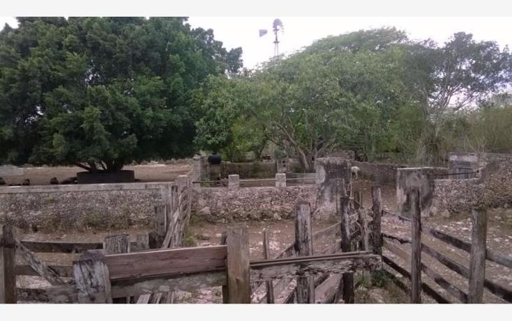 Foto de rancho en venta en  , corredor ganadero, tunkás, yucatán, 1755114 No. 23