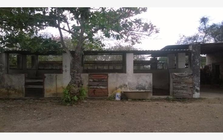 Foto de rancho en venta en  , corredor ganadero, tunkás, yucatán, 1755114 No. 26