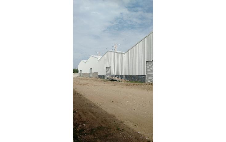 Foto de bodega en renta en  , corredor industrial, altamira, tamaulipas, 1619392 No. 02