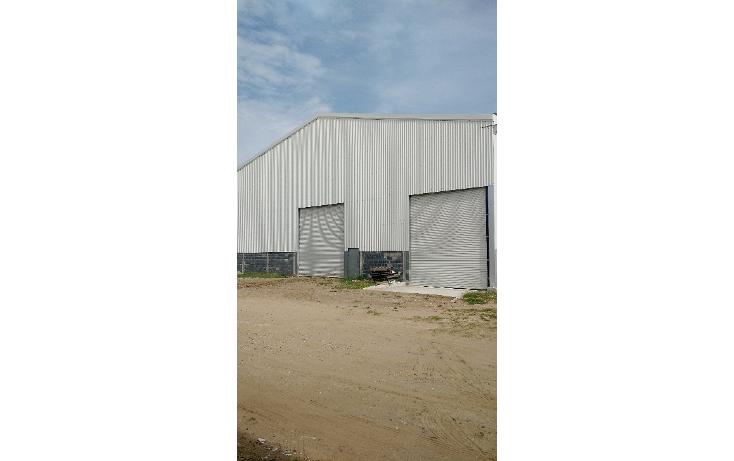 Foto de bodega en renta en  , corredor industrial, altamira, tamaulipas, 1619392 No. 03