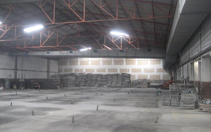 Foto de nave industrial en renta en  , corredor industrial la ciénega, puebla, puebla, 1118909 No. 05