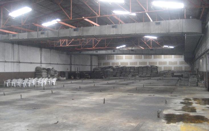 Foto de nave industrial en renta en  , corredor industrial la ciénega, puebla, puebla, 1118915 No. 02