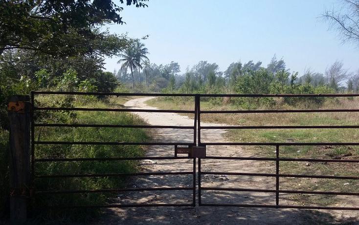 Foto de terreno habitacional en renta en corredor urbano luis donaldo calle 0, miramar, ciudad madero, tamaulipas, 2647682 No. 01