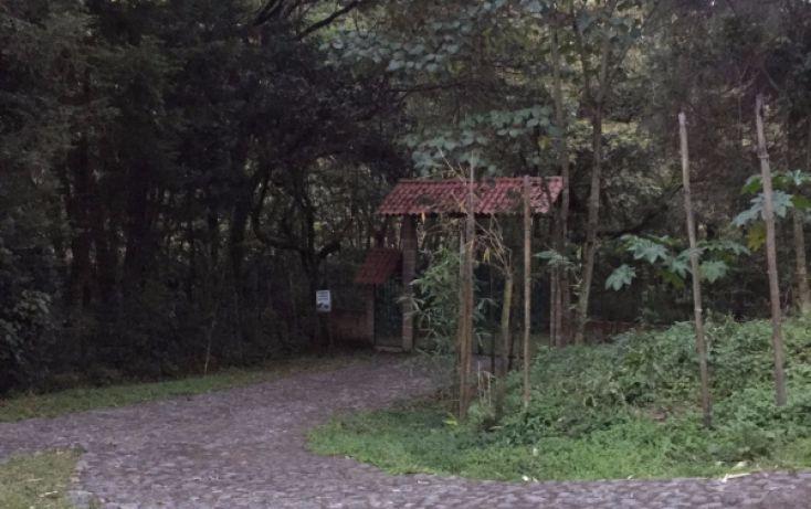 Foto de casa en venta en, coscomatepec de bravo, coscomatepec, veracruz, 1614513 no 05