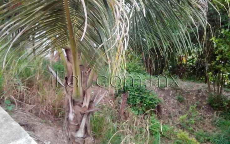 Foto de terreno habitacional en venta en cosmopulos, ceas, tuxpan, veracruz, 1572066 no 03