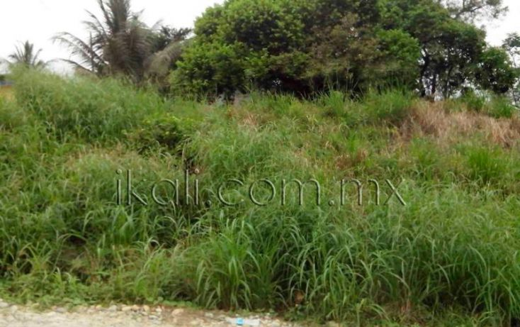 Foto de terreno habitacional en venta en cosmopulos, ceas, tuxpan, veracruz, 1572066 no 08