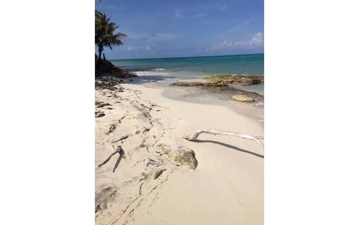 Foto de terreno habitacional en venta en  , costa del mar, benito ju?rez, quintana roo, 1263969 No. 04