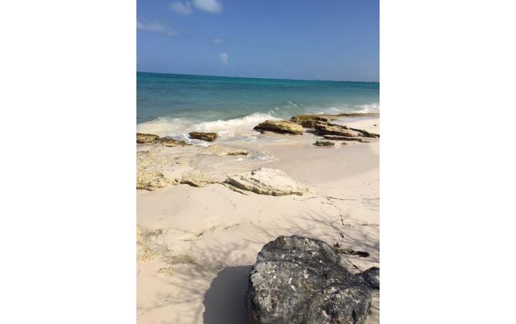 Foto de terreno habitacional en venta en  , costa del mar, benito ju?rez, quintana roo, 1263969 No. 05