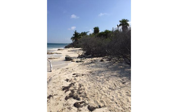 Foto de terreno habitacional en venta en  , costa del mar, benito ju?rez, quintana roo, 1263969 No. 09