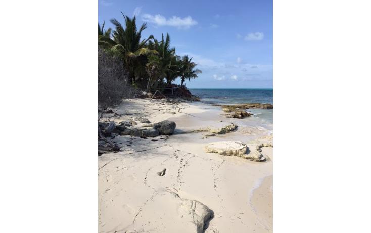 Foto de terreno habitacional en venta en  , costa del mar, benito ju?rez, quintana roo, 1263969 No. 10