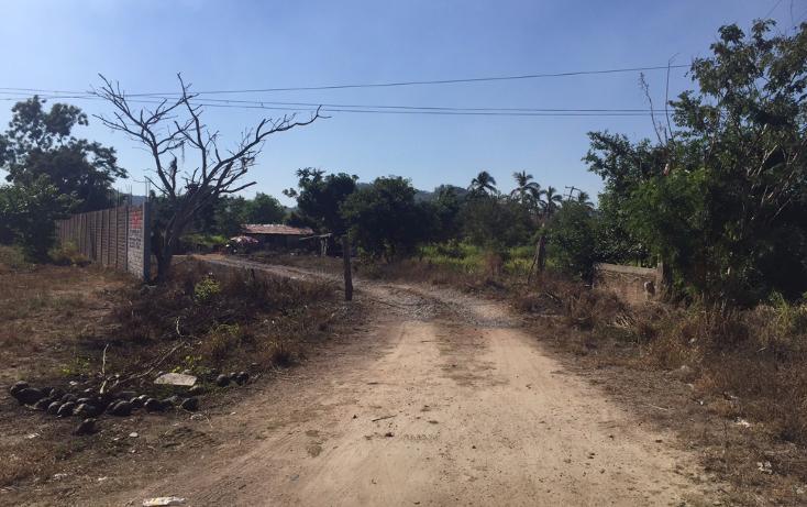 Foto de terreno comercial en venta en  , costalegre, cihuatlán, jalisco, 1928718 No. 08