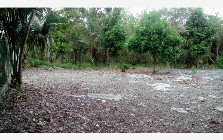 Foto de terreno comercial en venta en costera 1 sur, el naranjal, bacalar, quintana roo, 1819740 no 05