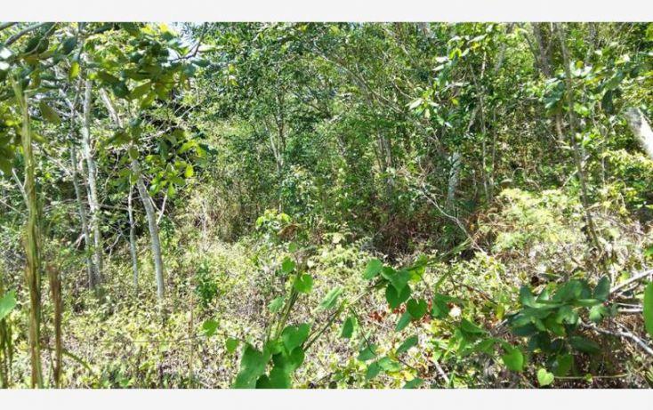 Foto de terreno comercial en venta en costera 30, bacalar, bacalar, quintana roo, 1849226 no 03