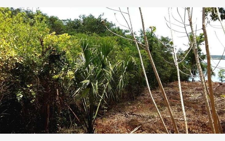 Foto de terreno comercial en venta en costera 30, bacalar, bacalar, quintana roo, 1849226 no 05