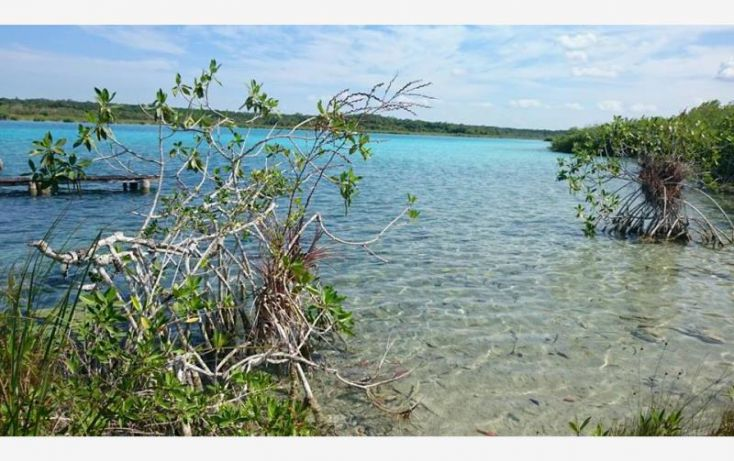 Foto de terreno comercial en venta en costera 5, bacalar, bacalar, quintana roo, 1689112 no 05