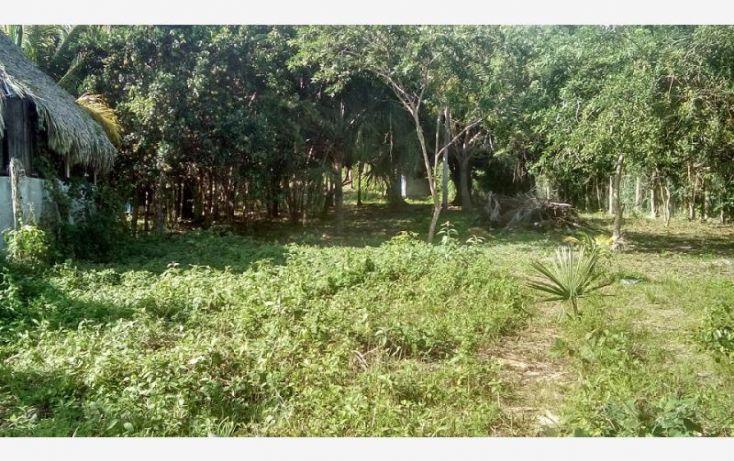 Foto de terreno comercial en venta en costera 5, bacalar, bacalar, quintana roo, 1728612 no 05