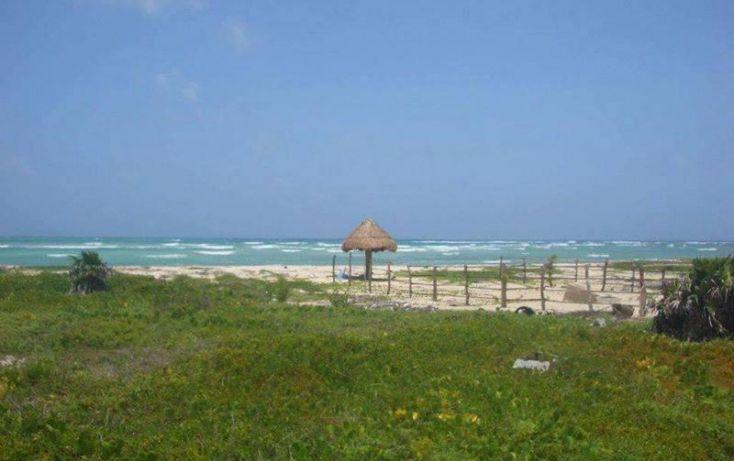 Foto de terreno comercial en venta en costera norte 18, kuchumatán, bacalar, quintana roo, 1998712 no 03