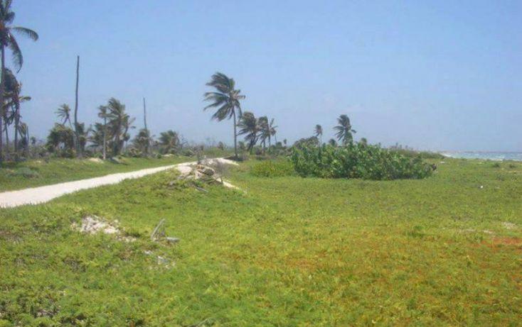 Foto de terreno comercial en venta en costera norte 18, kuchumatán, bacalar, quintana roo, 1998712 no 04