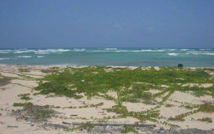 Foto de terreno comercial en venta en costera norte 18, kuchumatán, bacalar, quintana roo, 1998712 no 05