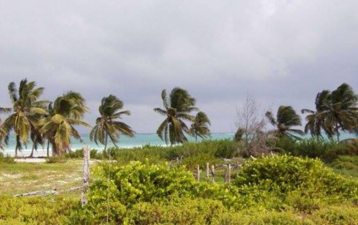 Foto de terreno comercial en venta en costera norte 51, kuchumatán, bacalar, quintana roo, 2007832 no 05