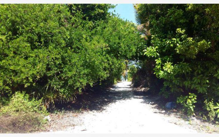 Foto de terreno comercial en venta en costera sur 49, kuchumatán, bacalar, quintana roo, 2029374 no 03