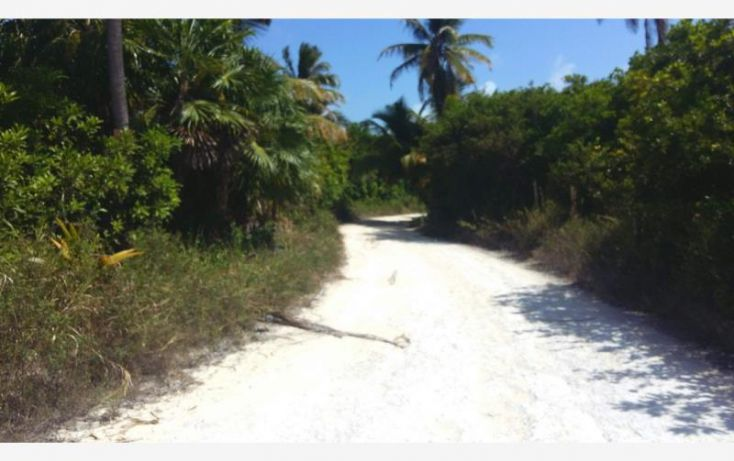 Foto de terreno comercial en venta en costera sur 49, kuchumatán, bacalar, quintana roo, 2029374 no 04