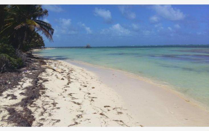 Foto de terreno comercial en venta en costera sur 49, kuchumatán, bacalar, quintana roo, 2029374 no 05