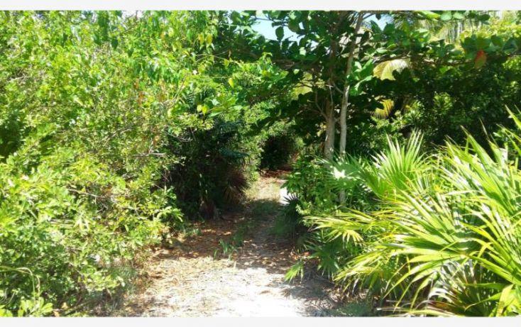 Foto de terreno comercial en venta en costera sur 49, kuchumatán, bacalar, quintana roo, 2029374 no 08