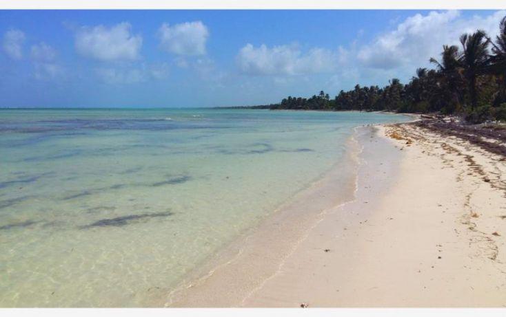 Foto de terreno comercial en venta en costera sur 49, kuchumatán, bacalar, quintana roo, 2029374 no 09