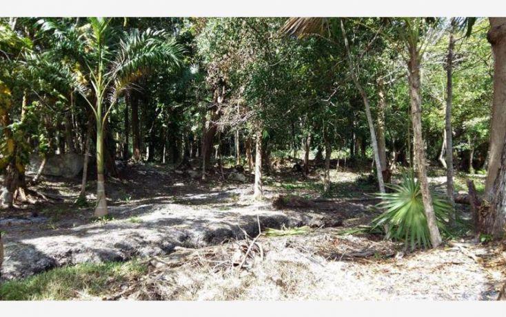 Foto de terreno habitacional en venta en costera sur 6, bacalar, bacalar, quintana roo, 1672288 no 03