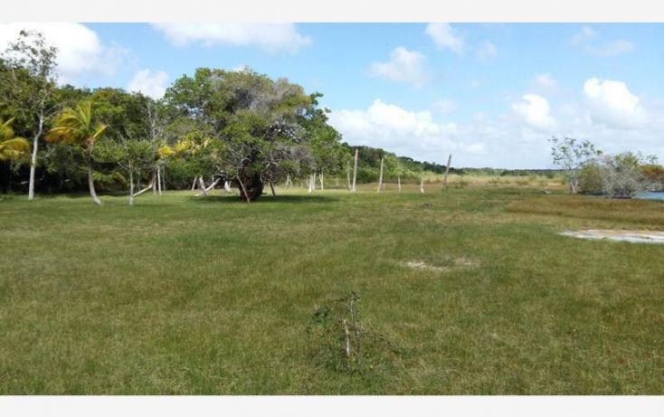 Foto de terreno habitacional en venta en costera sur 6, bacalar, bacalar, quintana roo, 1672288 no 06