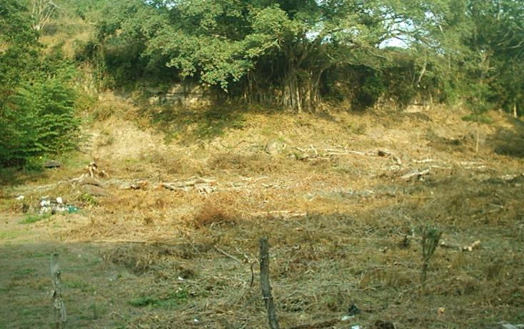 Foto de rancho en venta en  , cotaxtla, cotaxtla, veracruz de ignacio de la llave, 1247201 No. 03