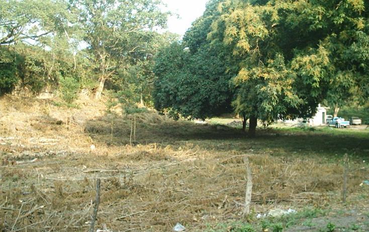 Foto de rancho en venta en  , cotaxtla, cotaxtla, veracruz de ignacio de la llave, 1247201 No. 04
