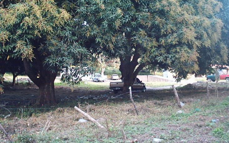 Foto de rancho en venta en  , cotaxtla, cotaxtla, veracruz de ignacio de la llave, 1247201 No. 05
