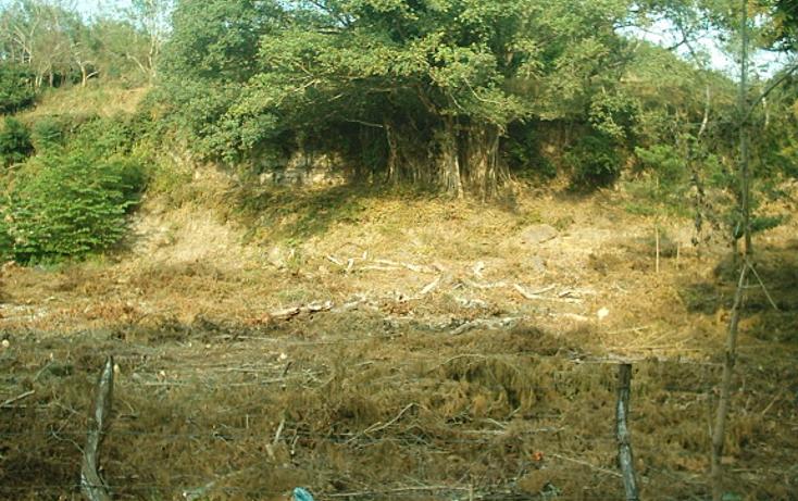 Foto de rancho en venta en  , cotaxtla, cotaxtla, veracruz de ignacio de la llave, 1247201 No. 06