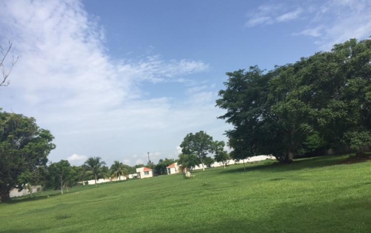 Foto de terreno comercial en venta en  , cotaxtla, cotaxtla, veracruz de ignacio de la llave, 2015450 No. 01