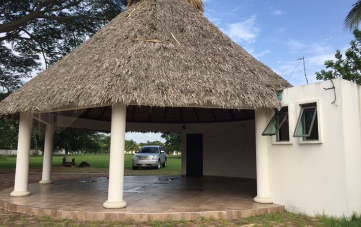 Foto de terreno comercial en venta en  , cotaxtla, cotaxtla, veracruz de ignacio de la llave, 2015450 No. 05