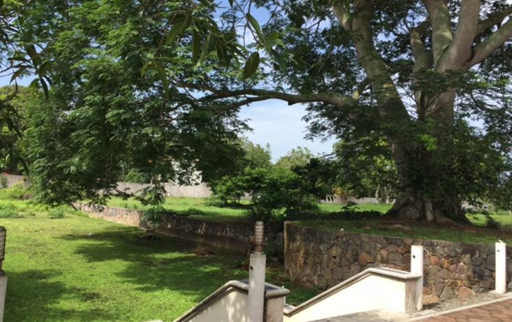 Foto de terreno comercial en venta en  , cotaxtla, cotaxtla, veracruz de ignacio de la llave, 2015450 No. 09