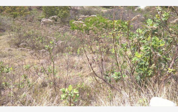 Foto de terreno habitacional en venta en coto el roble 12, santa cruz del astillero, el arenal, jalisco, 2028236 no 07