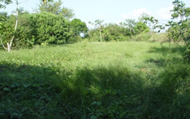 Foto de terreno comercial en venta en  , coyolitos, tampico alto, veracruz de ignacio de la llave, 1195579 No. 01