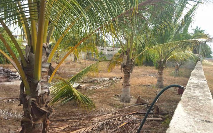 Foto de terreno habitacional en venta en, coyuca de benítez centro, coyuca de benítez, guerrero, 1758805 no 03