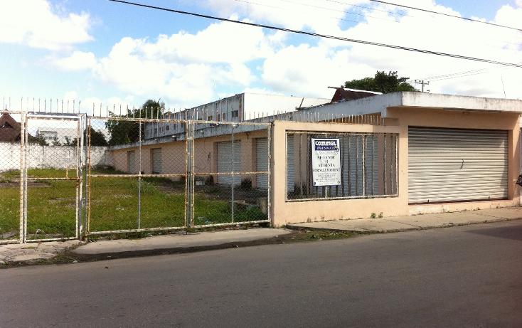 Foto de local en renta en  , cozumel centro, cozumel, quintana roo, 1106193 No. 01